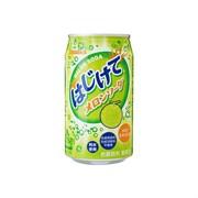 Сангария Газированный напиток Мелон со вкусом дыни 350мл (24)